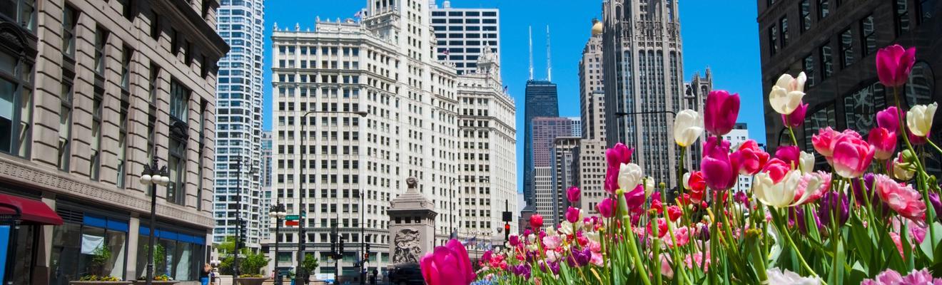 Hoteles en chicago desde 20 noche buscar en kayak for Hoteles en chicago
